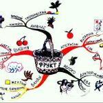 mindd map