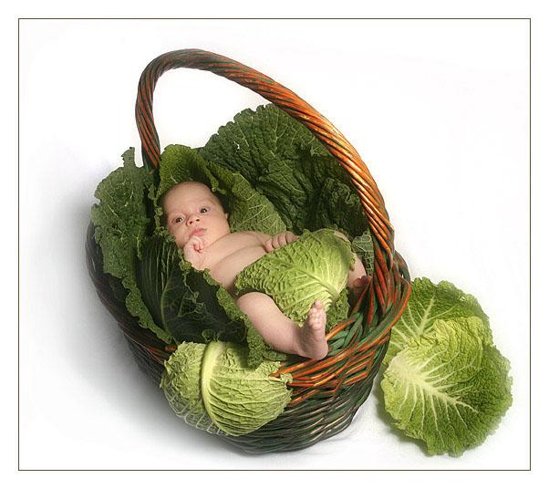 rebyonok poyavilsya v semye Что происходит в семье после рождения ребенка?