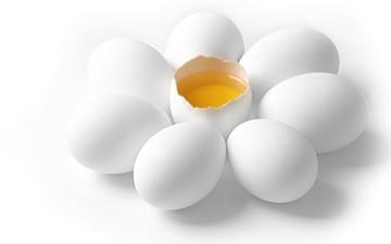 Вред яичных желтков: правда или миф?